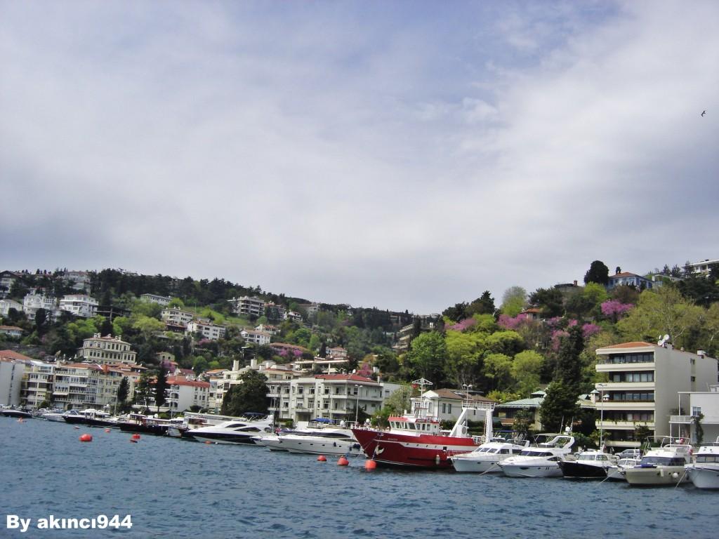 Bebek kıyıları İstanbul