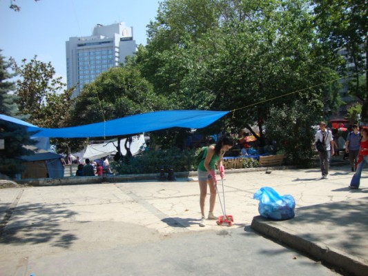 Taksim Gezi Parkı  (79)