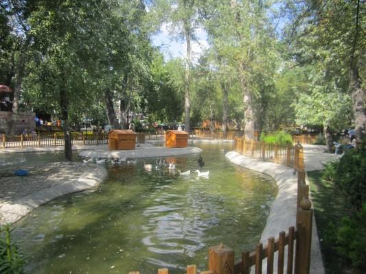 Kuğulu Park Ankara (13)