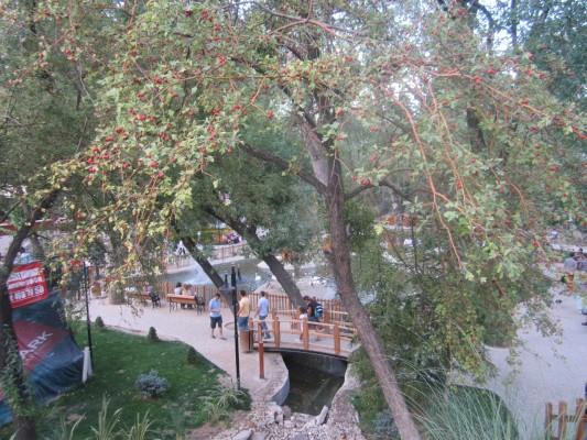 Kuğulu Park Ankara (35)
