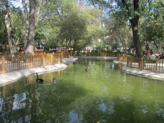 Kuğulu Park Ankara (7)