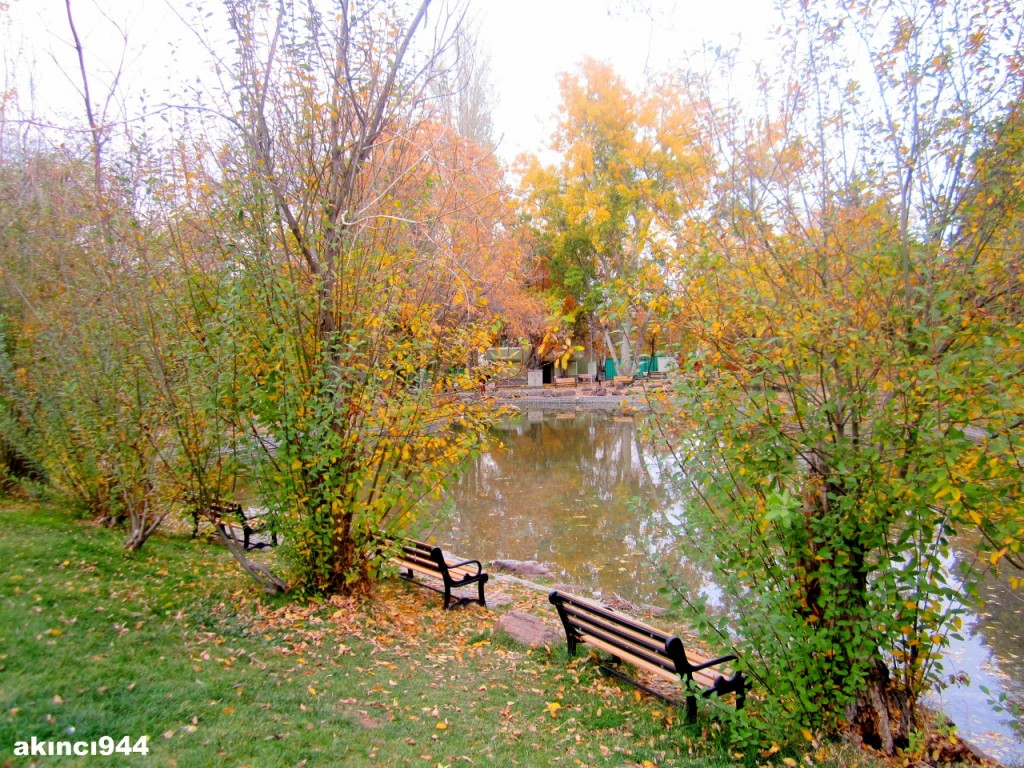 Botanik  AKINCI 944 - Ankara Çankaya Botanik Parkı