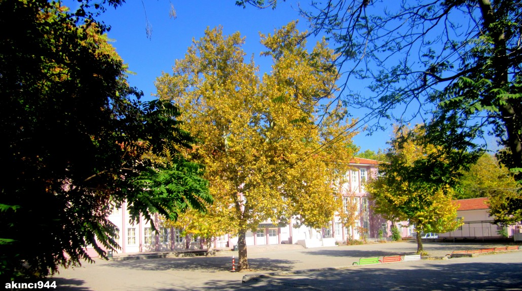 Saraçoğlu Mahallesi Namık Kemal İlkokulu