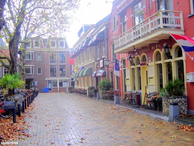 Delft Kenti