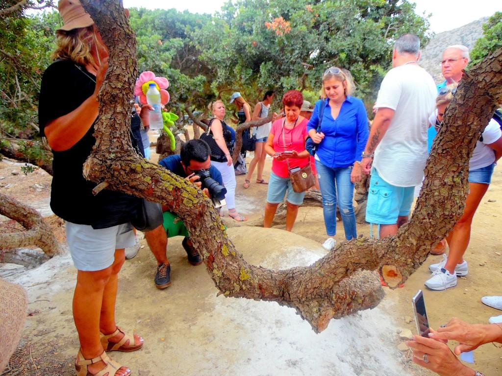 Chios-Sakız Adası