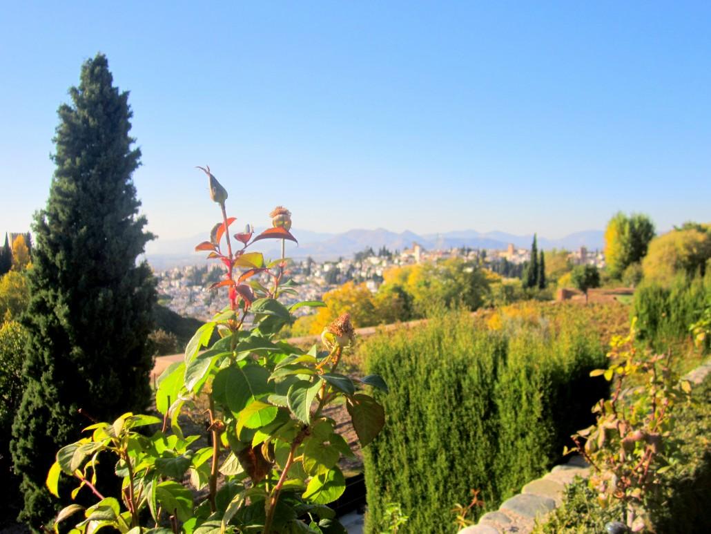 Elhamra Sarayı (19)