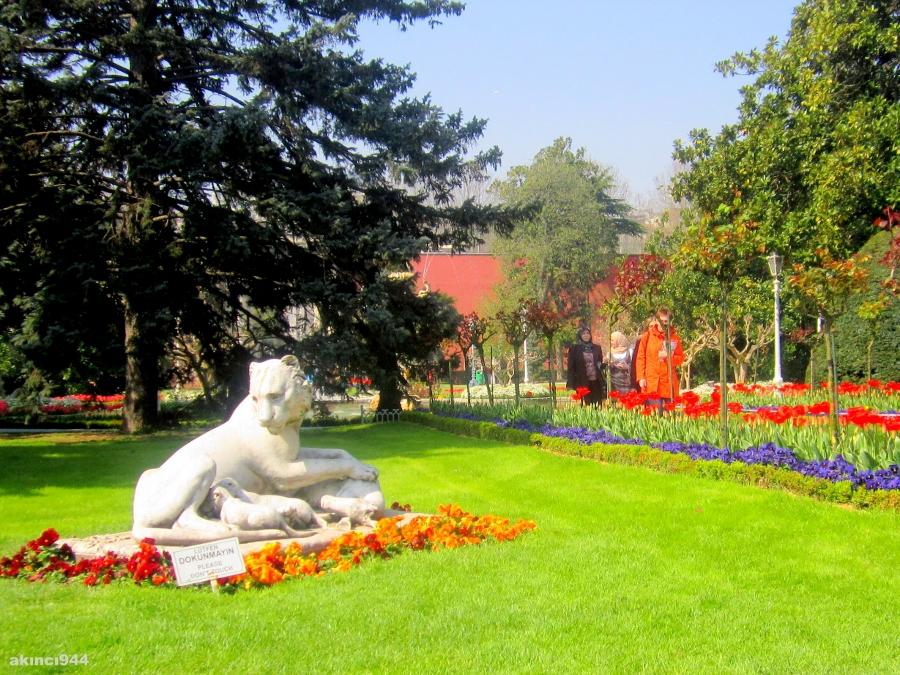 Dolmabahçe Sarayı Bahçeleri (131)